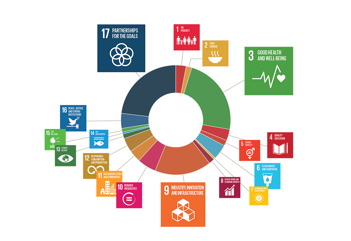 Embedding SDGs in your organization: an impact strategy – EMMA VERHEIJKE (Sinzer, Our Partners)